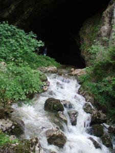 Ulaz u spilju kod Hude Luknje, kanjona u kojemu je u svibnju 1945. presječena hrvatska kolona na povlačenju i mjesto pogibije mnogih Hrvata. Još jednom ćemo reći: ono malo, plavo i jedva vidljivo na ulazu u spilju je Blanka (snimljeno u lipnju 2008.)
