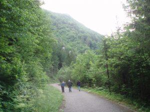 Blanka Matković i Dragutin Šafarić u slovenskim šumama u lipnju 2008.